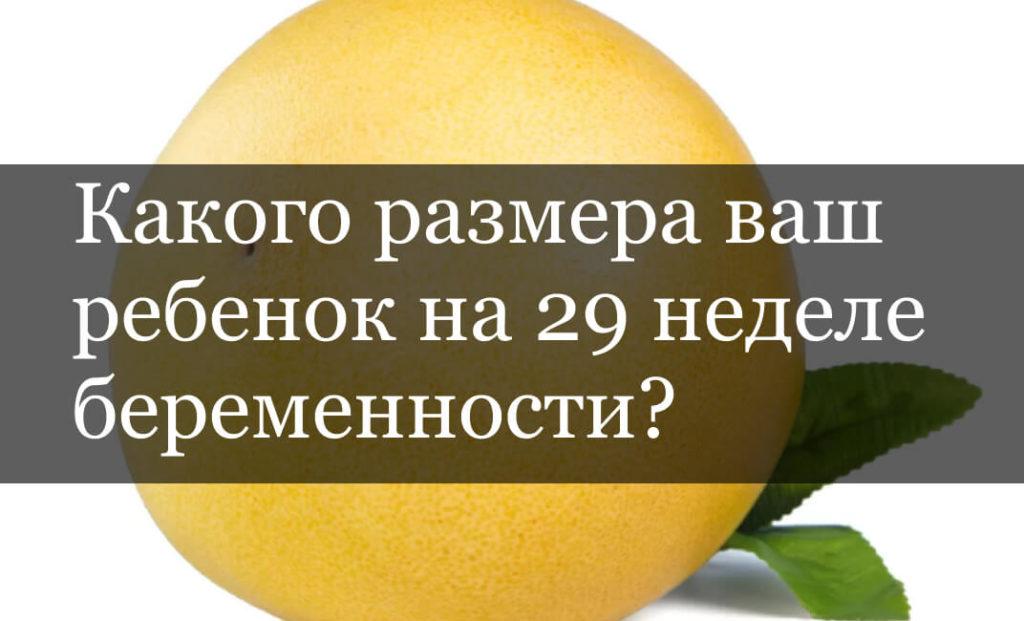 Какого рост плода на 29 неделе беременности?